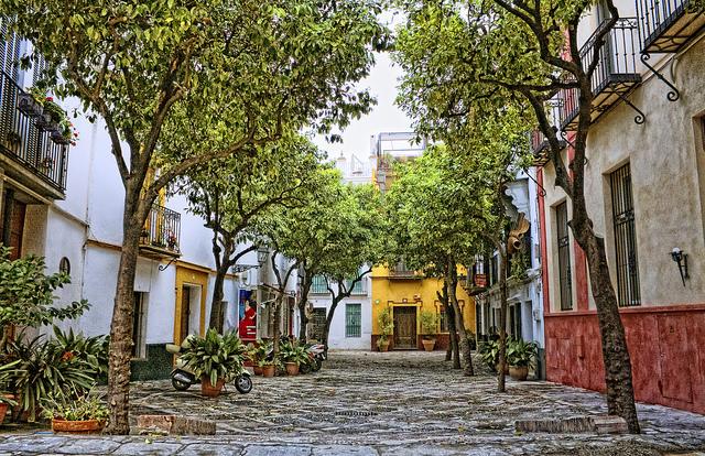 Barrio Santa Cruz Sevilla página traductor jurado