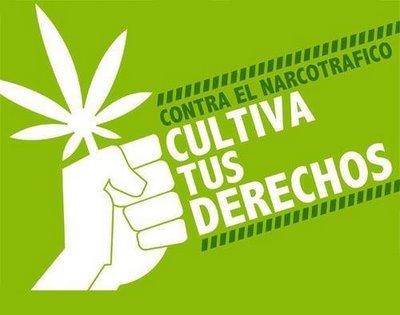 cultiva tus derechos marihuana por Taringa!