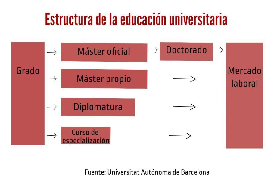 estructura-universitaria