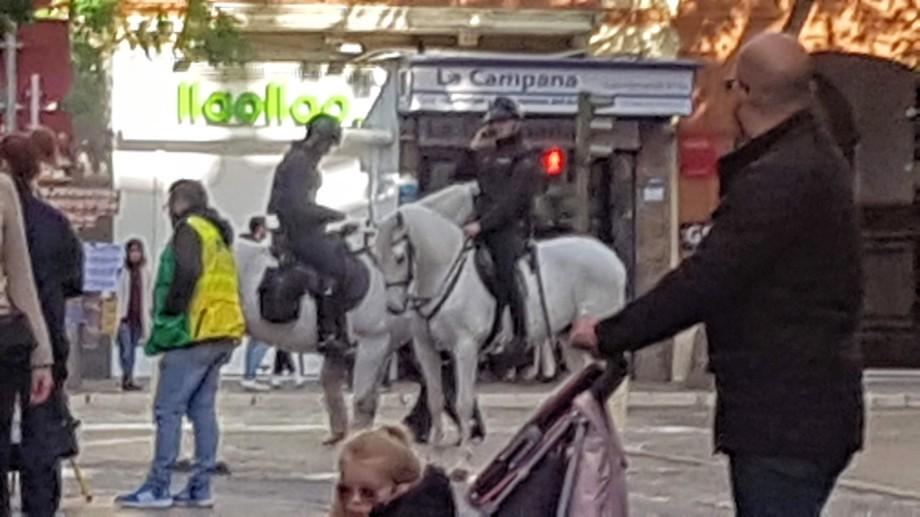caca de caballo 0,0